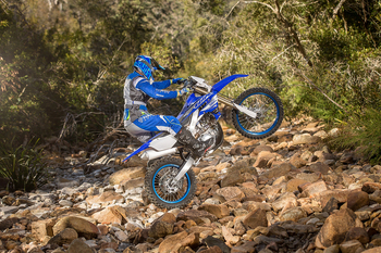 2019-Yamaha-WR450F-EU-Racing_Blue-Action-001.jpg