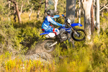 2019-Yamaha-WR250F-EU-Racing_Blue-Action-003.jpg